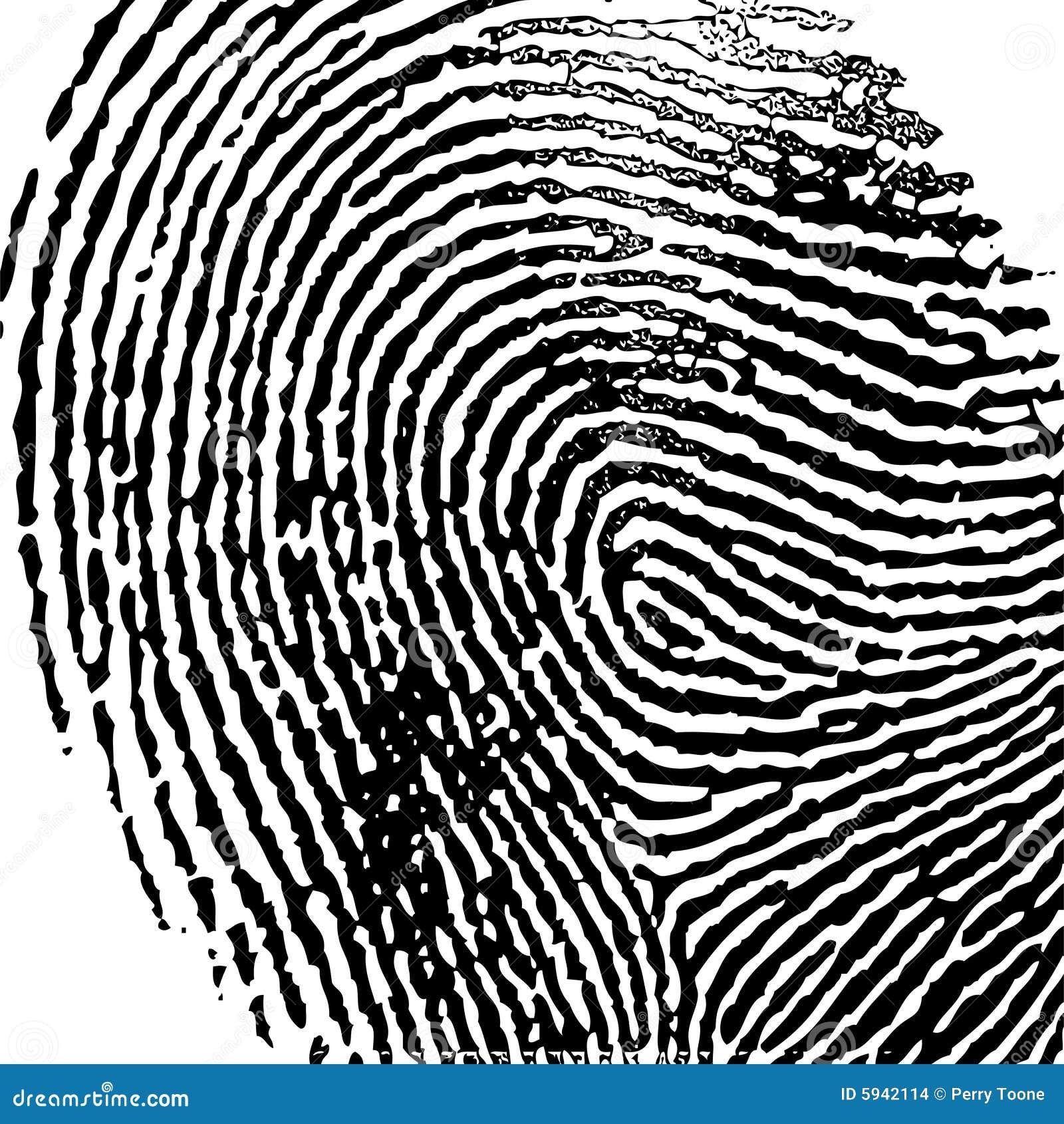 fingerprint vector ilustration stock images