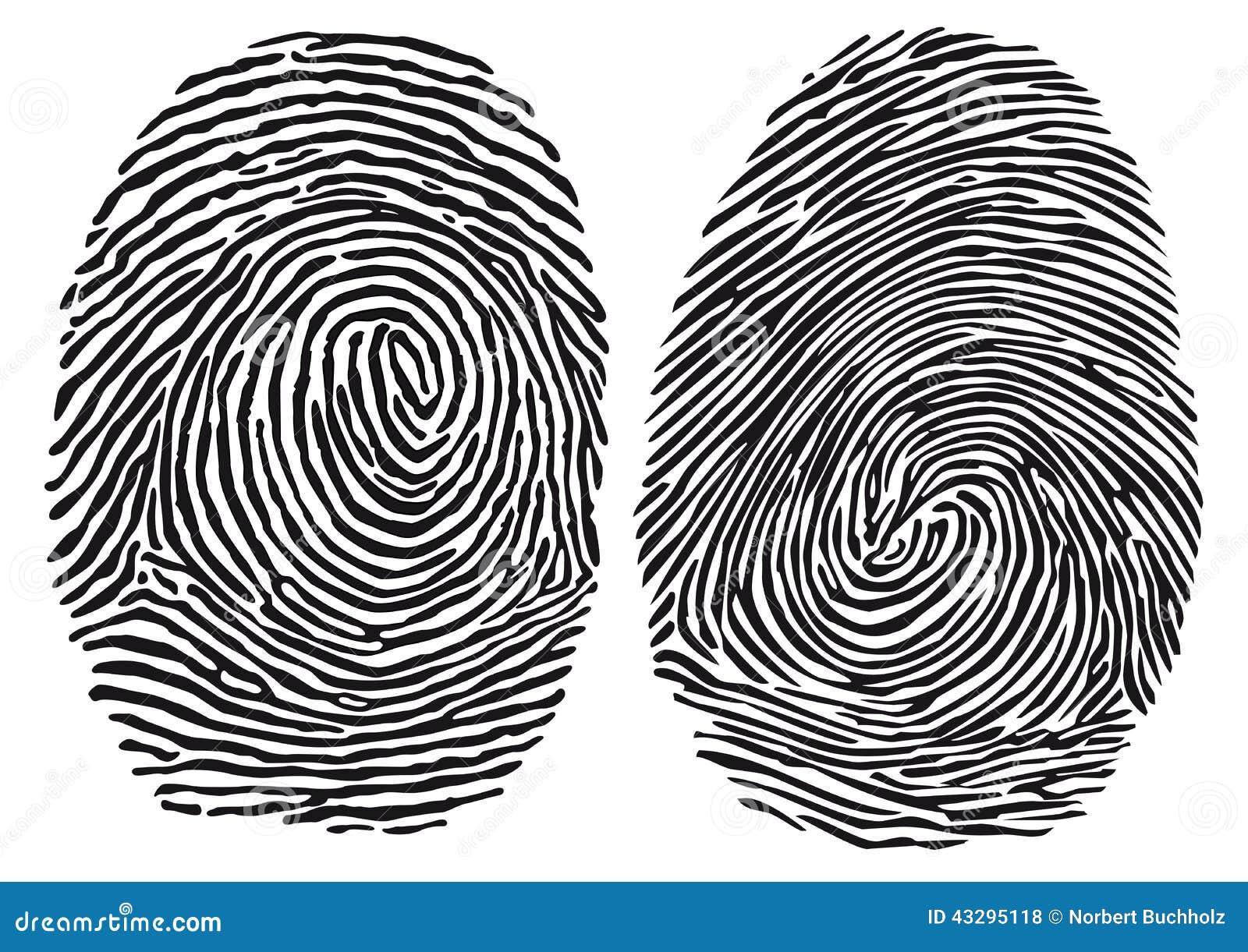 Fingerprints Stock Vector. Illustration Of Loops