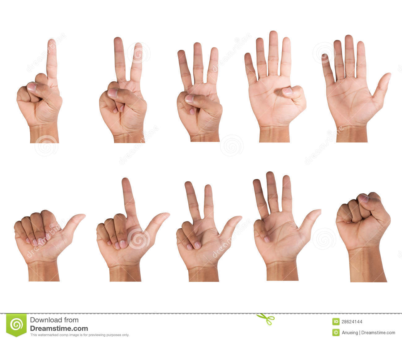 Fingers count, ten styles white background, isolated.