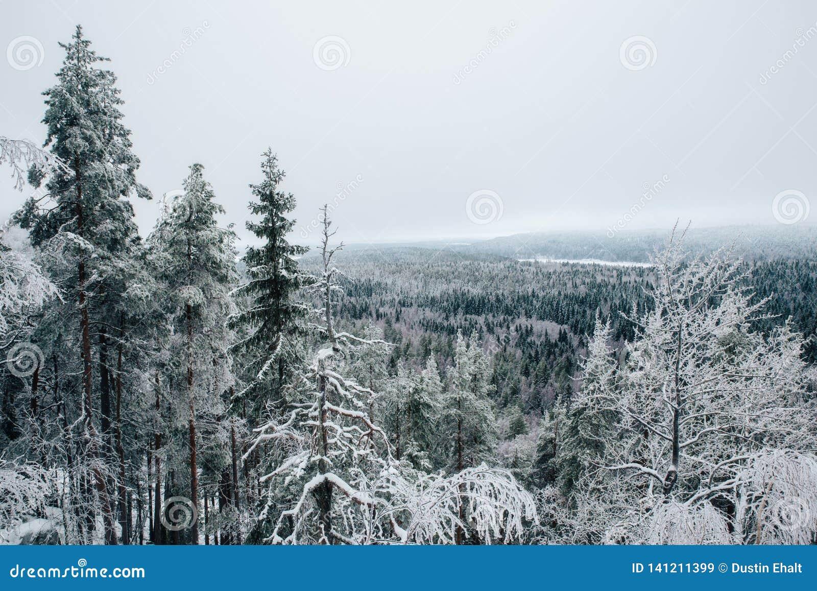 Finland vinter