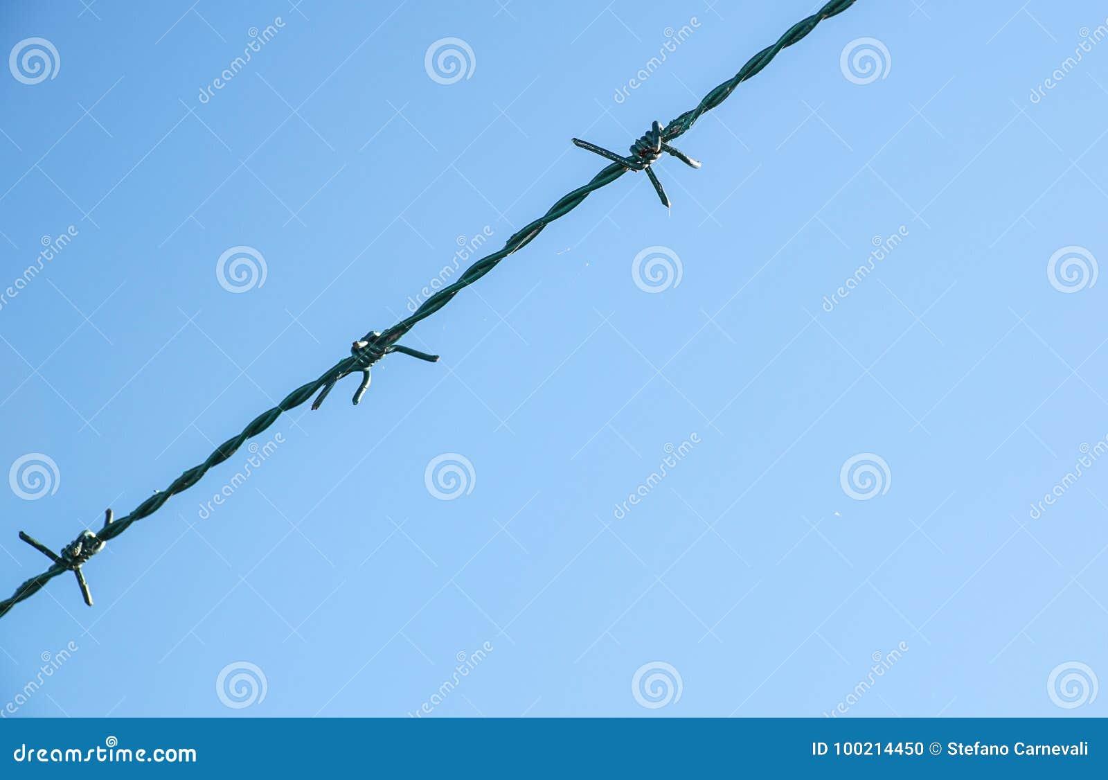Fio enrolado da lâmina com suas farpas de aço afiadas sobre uma cerca de perímetro da malha assegurando a segurança