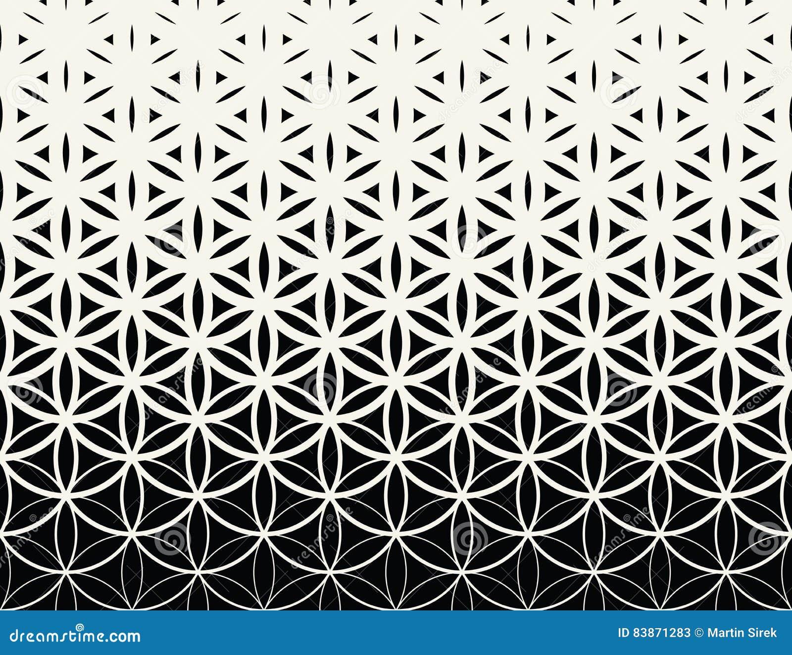 Fiore in bianco e nero di pendenza della geometria sacra astratta del modello del semitono di vita