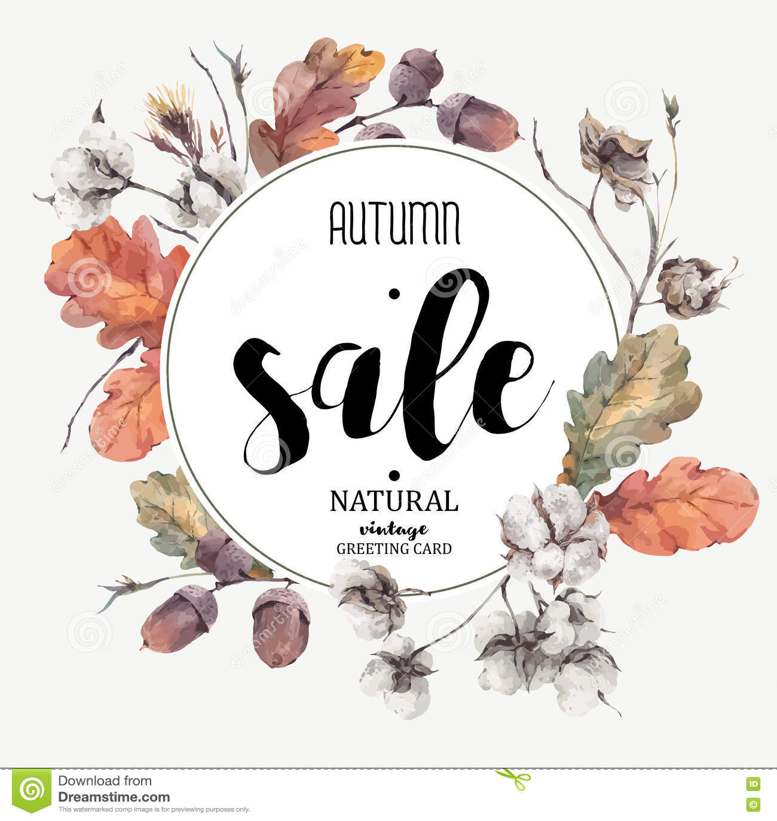 Fiore d annata del cotone di vettore di autunno, carta di vendita