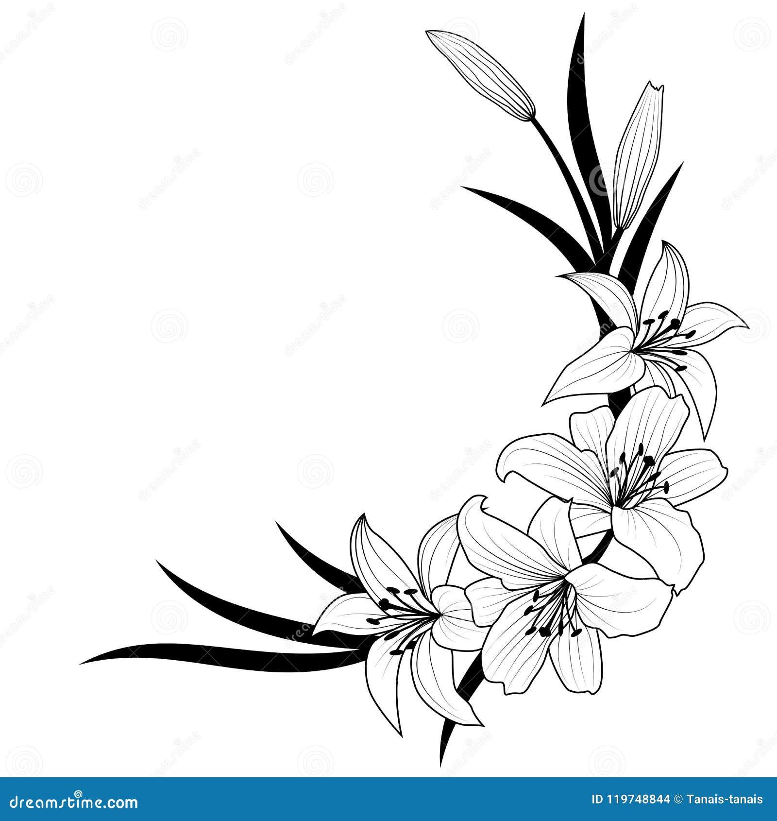 Fiore del giglio