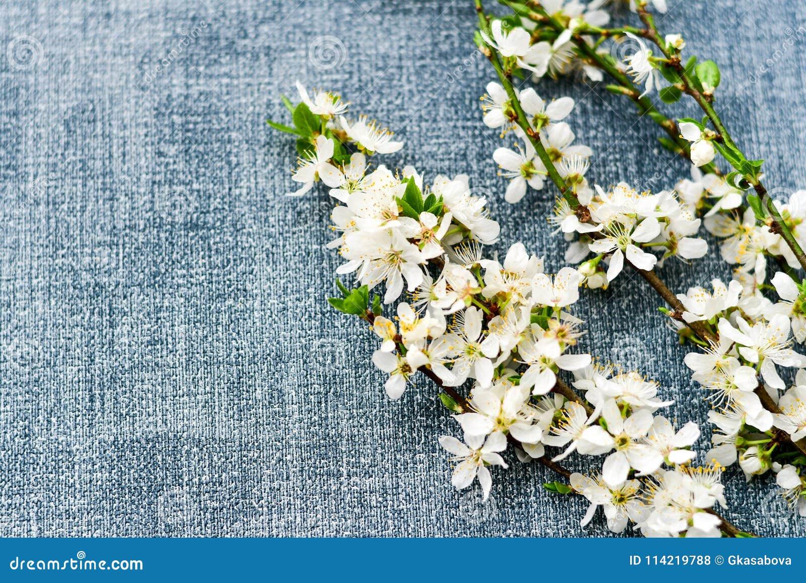 Fiore della sorgente