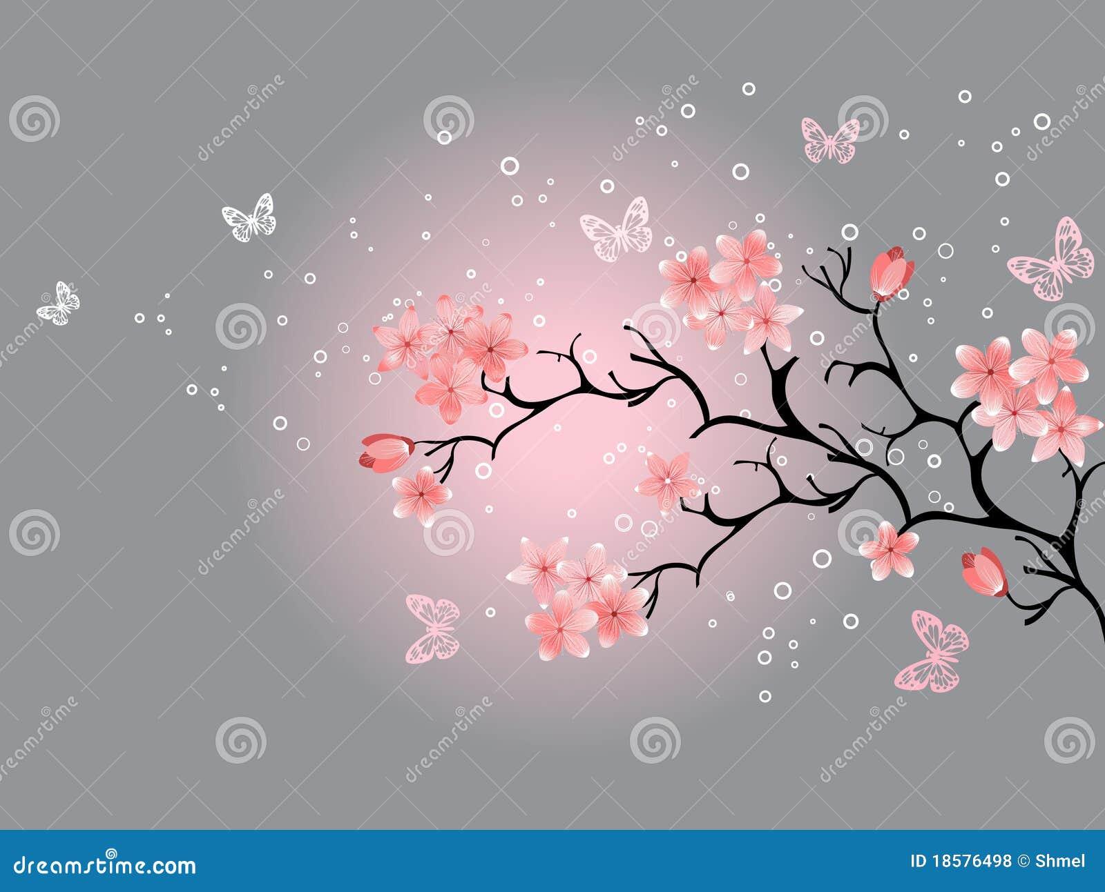 Fiore di ciliegia, priorità bassa grigia