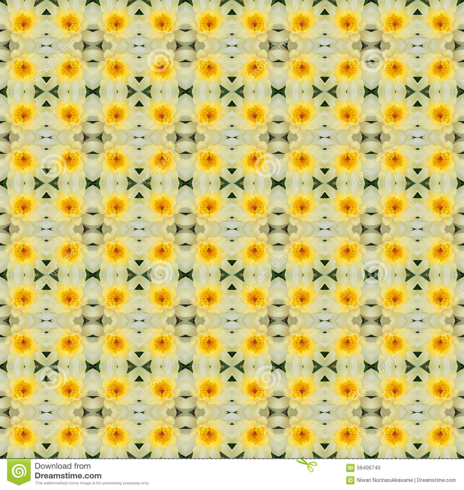 Fiore di loto giallo in piena fioritura senza cuciture
