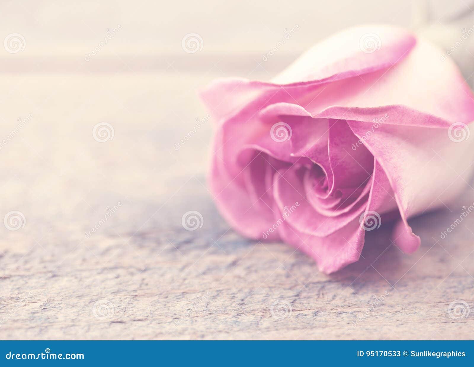 Fiori Con La F.Fiore Di Rosa Su Fondo Di Legno Rustico Cartolina D Auguri Con La