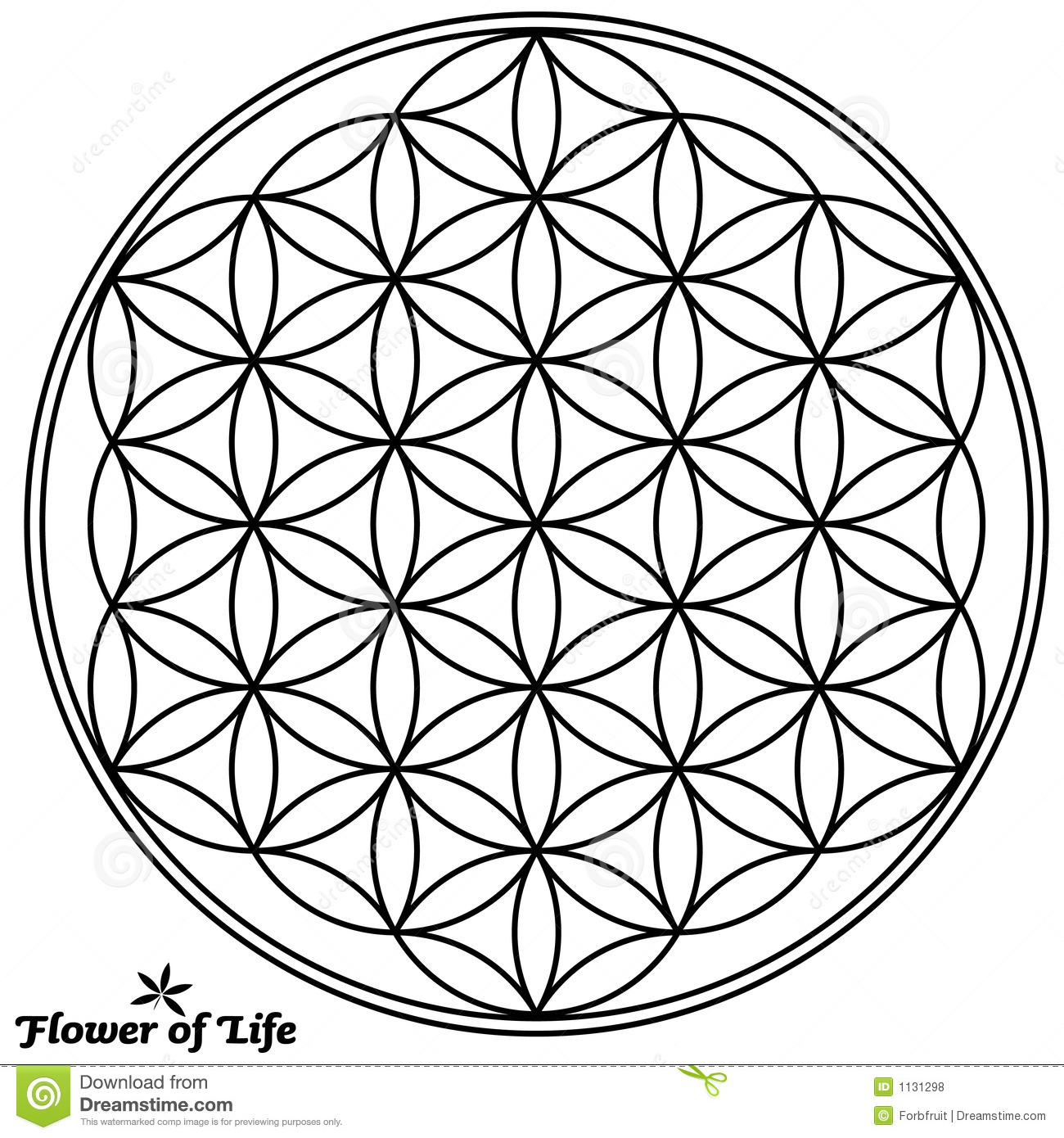flower of life book pdf