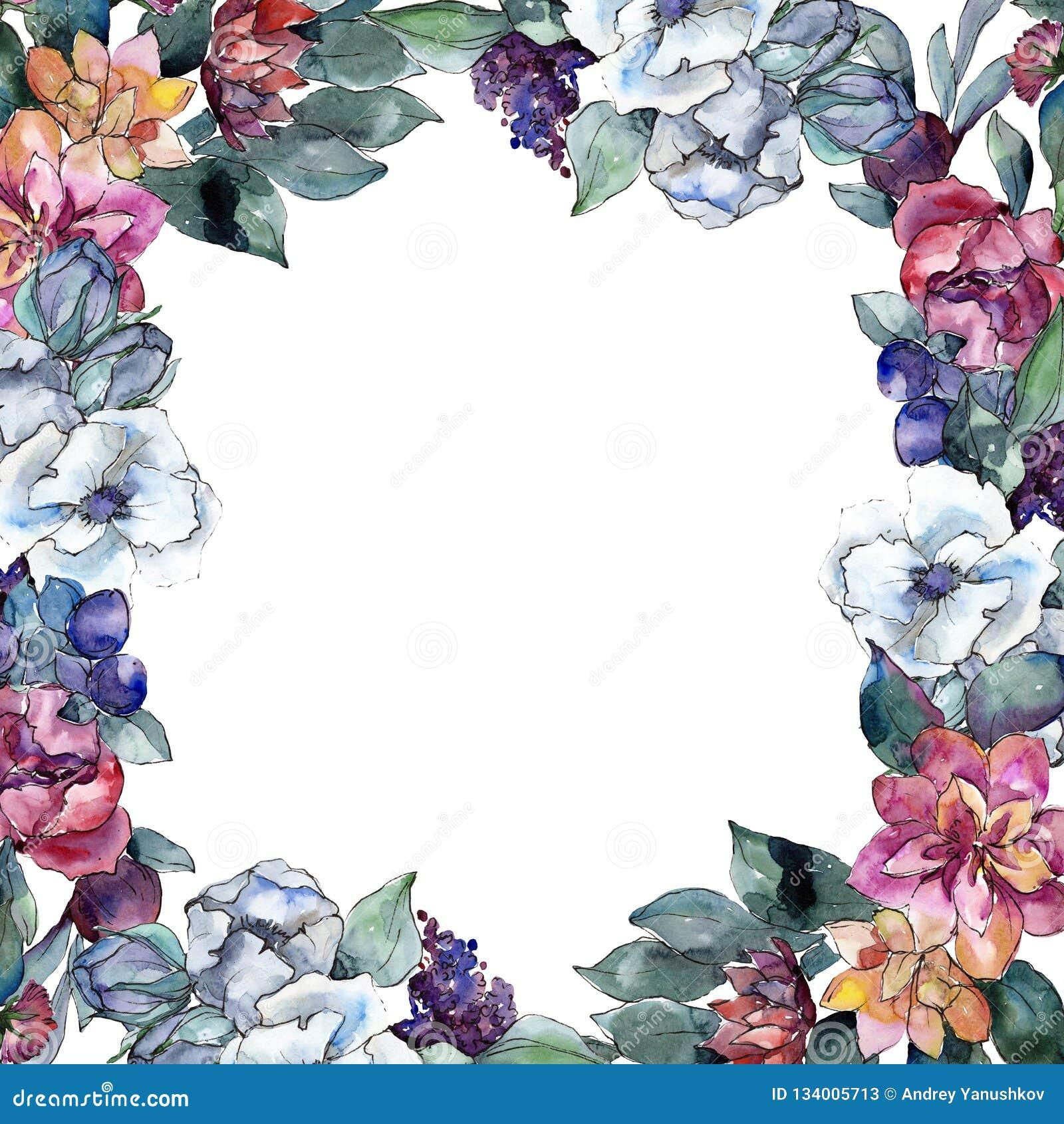 Fiore floreale del mazzo Insieme dell illustrazione del fondo dell acquerello disegno acquerello Quadrato dell ornamento del conf