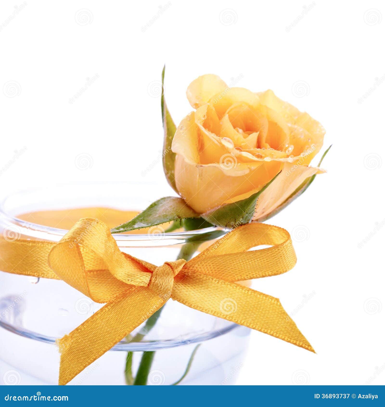 Download Fiore Giallo Di Una Rosa In Un Vetro Con Un Arco. Immagine Stock - Immagine di rugiada, pianta: 36893737