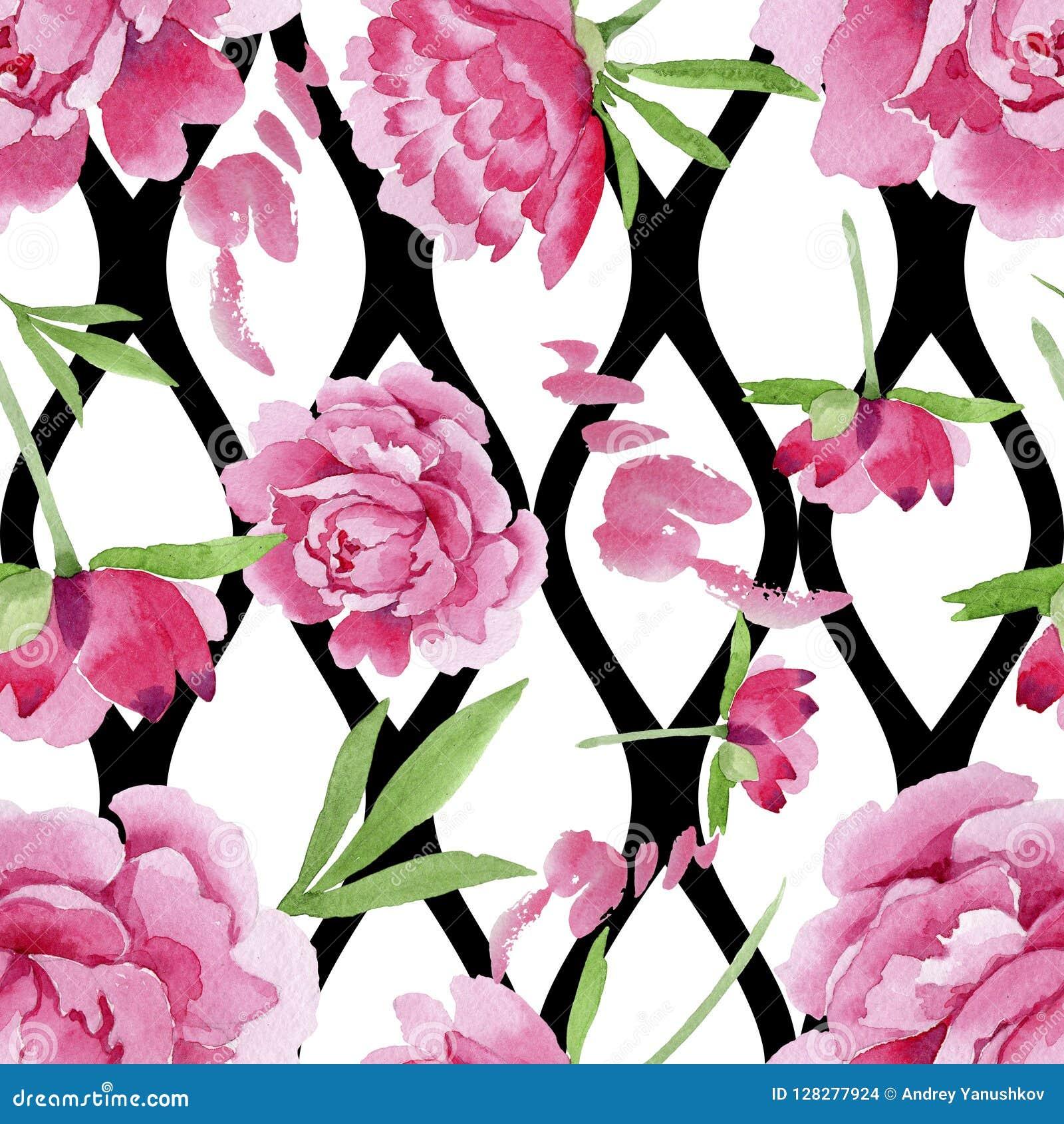 Fiore rosa della peonia dell acquerello Fiore botanico floreale Modello senza cuciture del fondo