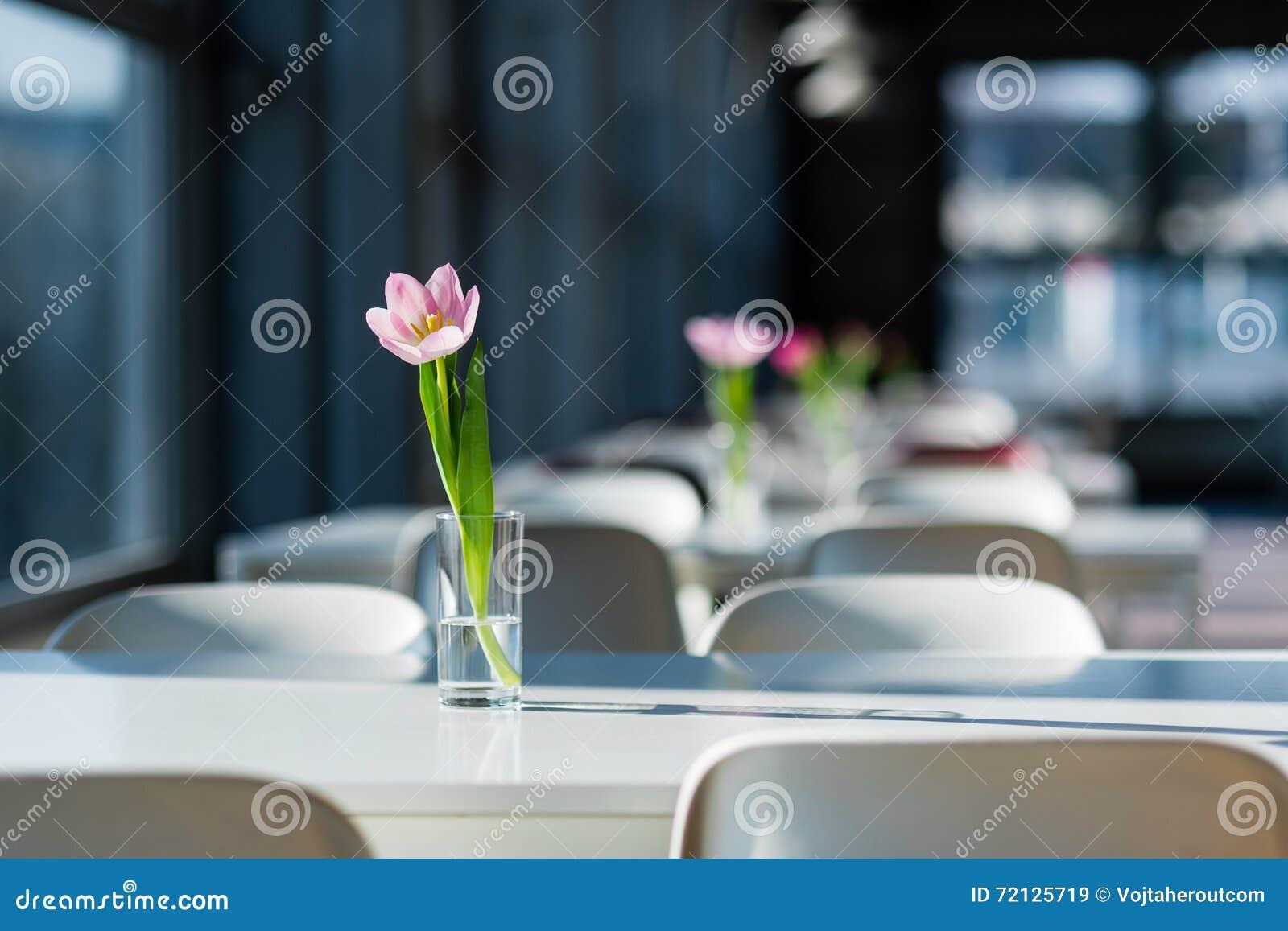 Lampada Fiore Tulipano : Fiore sulla tabella tulipano nel vaso nella corte di alimento