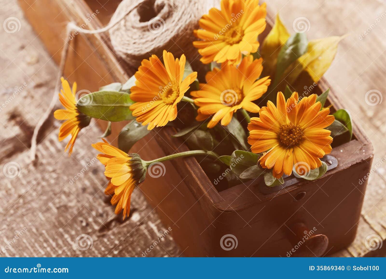 Fiori autunnali in scatola sulla tavola di legno for Immagini fiori autunnali