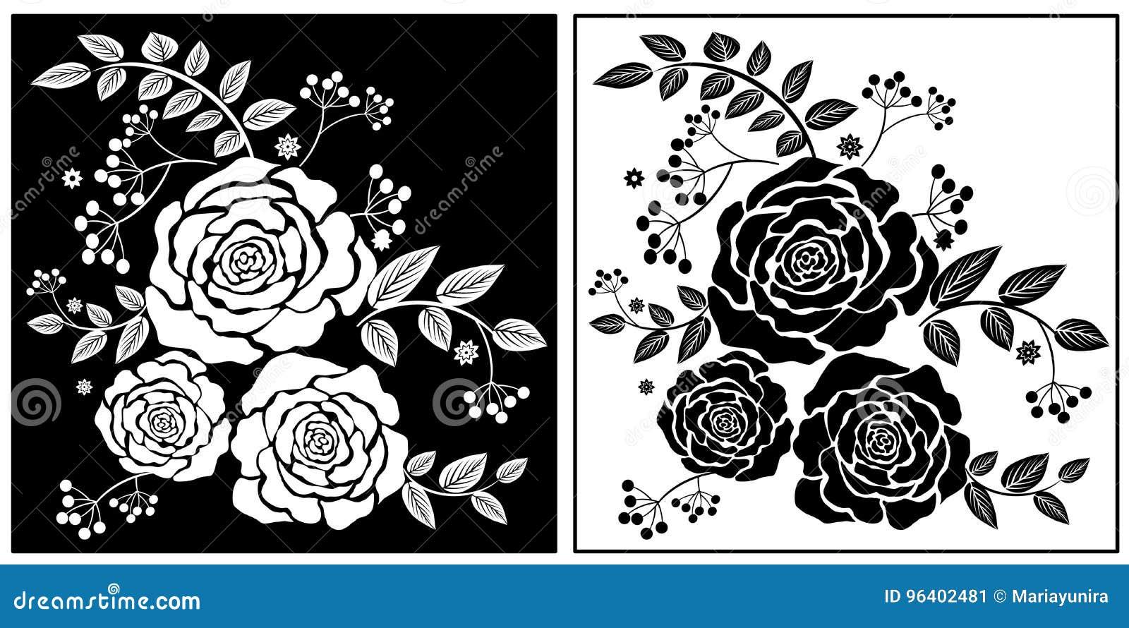 Fiori Bianchi E Neri.Fiori Bianchi Neri Illustrazione Di Stock Illustrazione Di