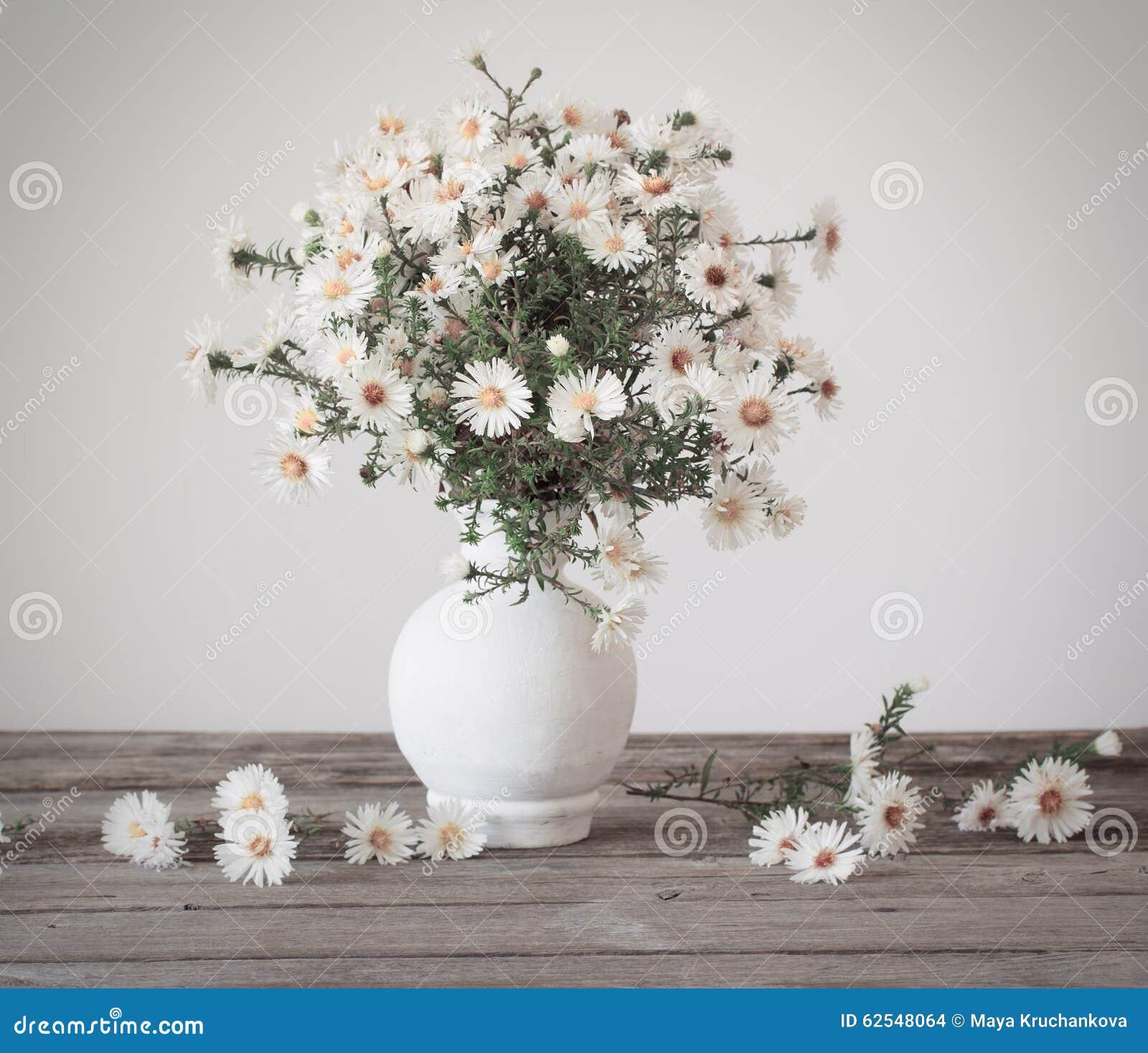 Fiori Bianchi In Vaso.Fiori Bianchi In Vaso Fotografia Stock Immagine Di Background