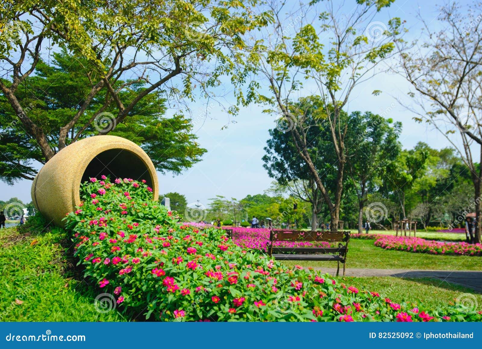 Piante Che Fioriscono Tutta Estate fiori che fioriscono in un campo durante l'estate con il