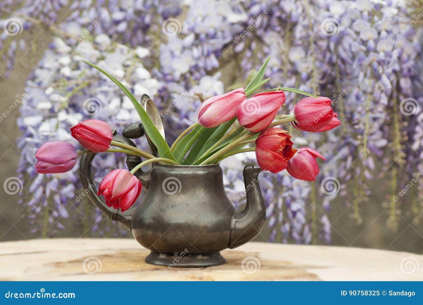 Lampada Fiore Tulipano : Fiori del tulipano immagine stock. immagine di fiore 90758325