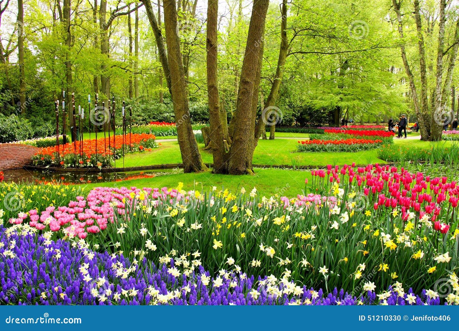 Fiori della primavera giardini di keukenhof fotografia stock immagine di viola paesaggio - Fiori da giardino primavera estate ...