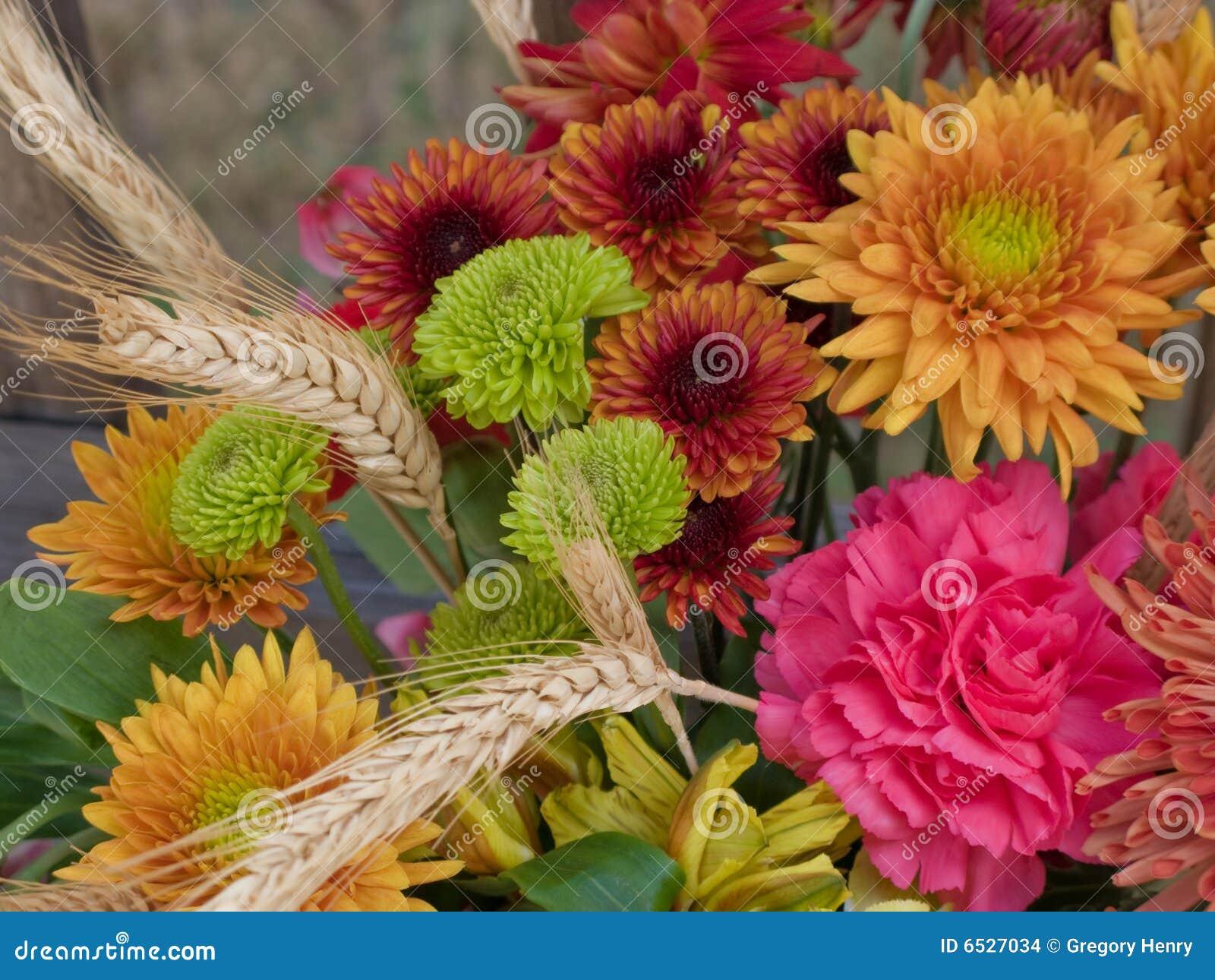 Fiori di autunno immagini stock immagine 6527034 for Immagini fiori autunnali