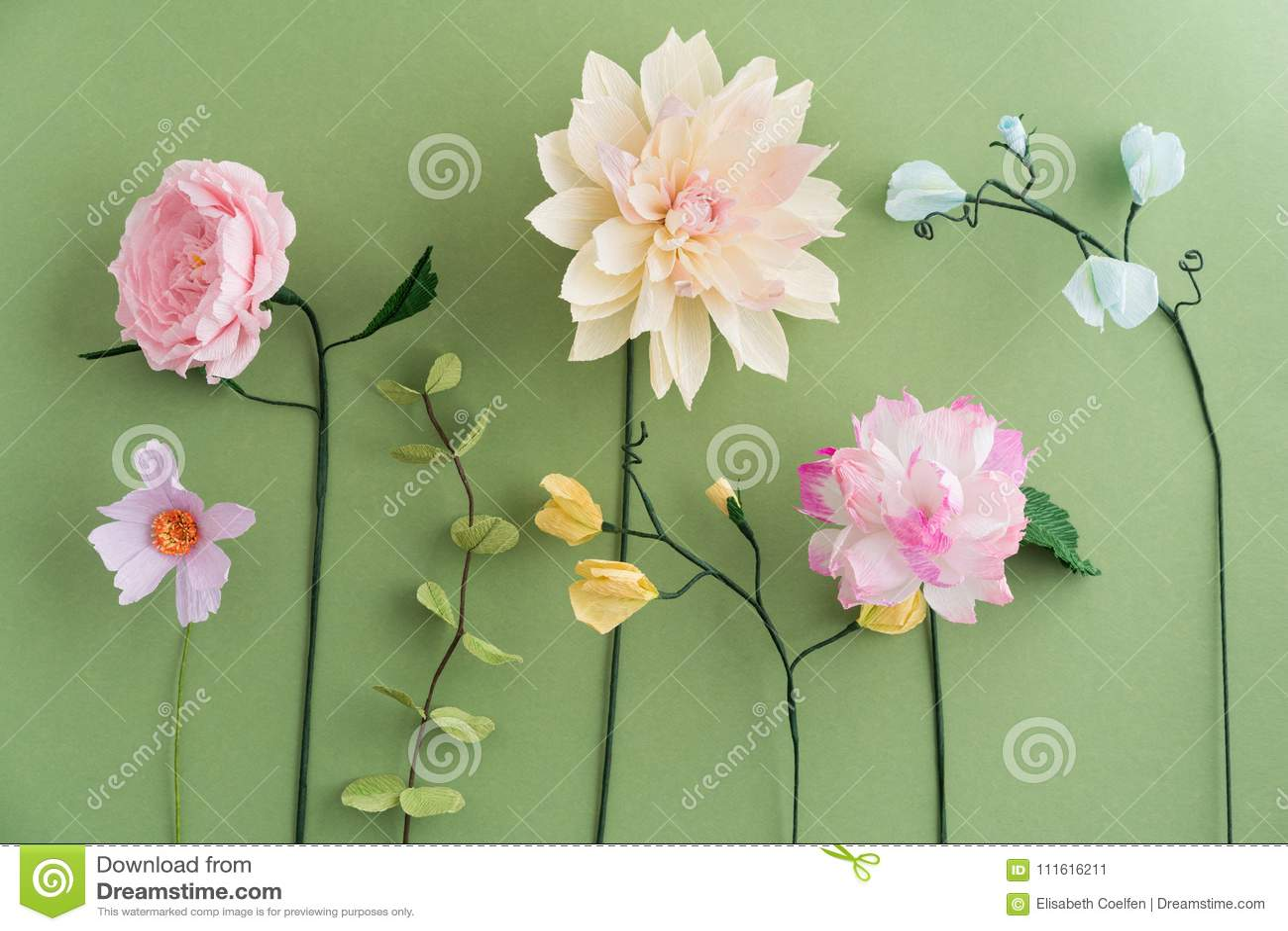 Papaveri Di Carta Crespa fiori di carta crespa immagine stock. immagine di