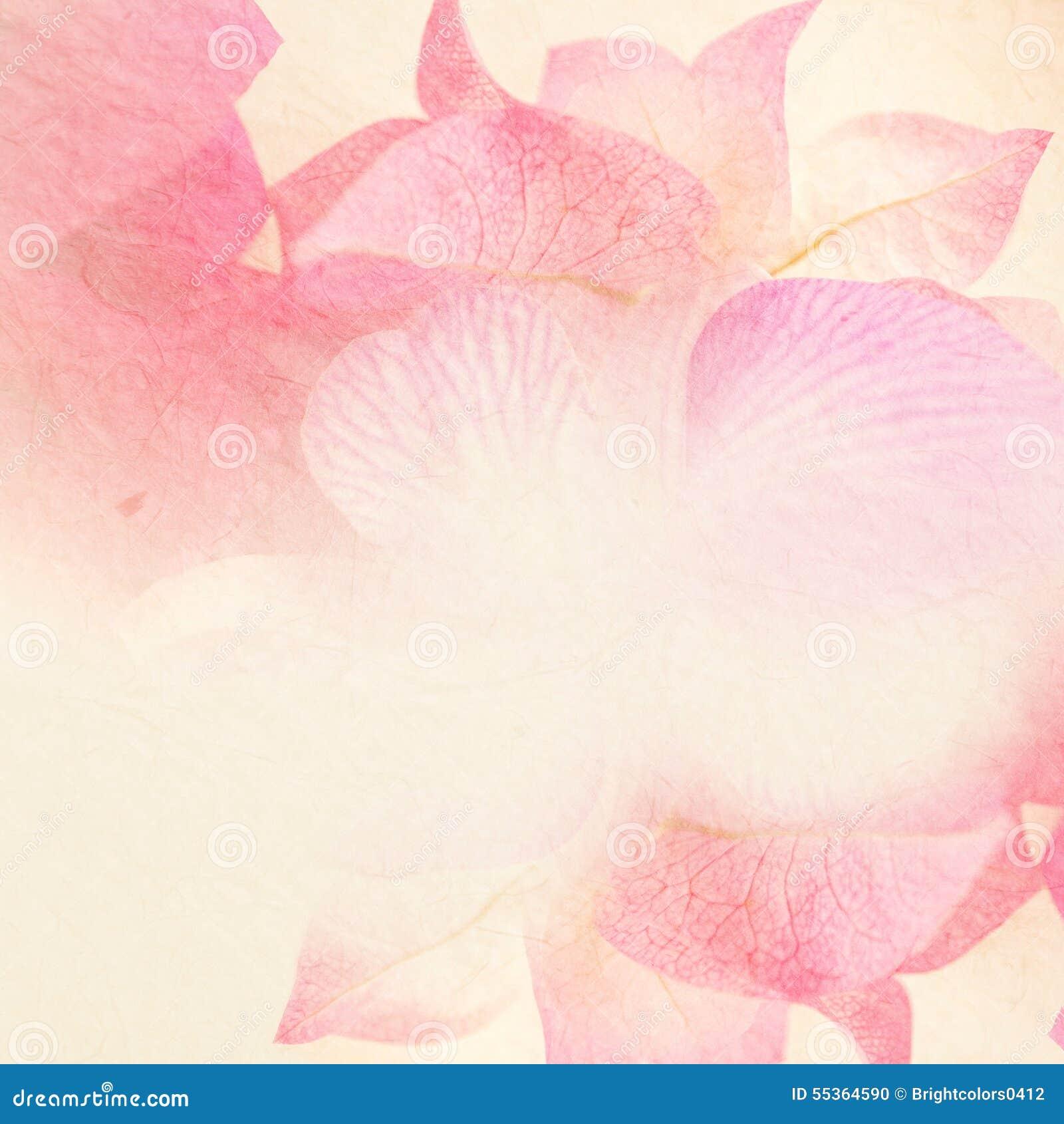 Fiori dolci nello stile d annata di colore su struttura della carta del gelso
