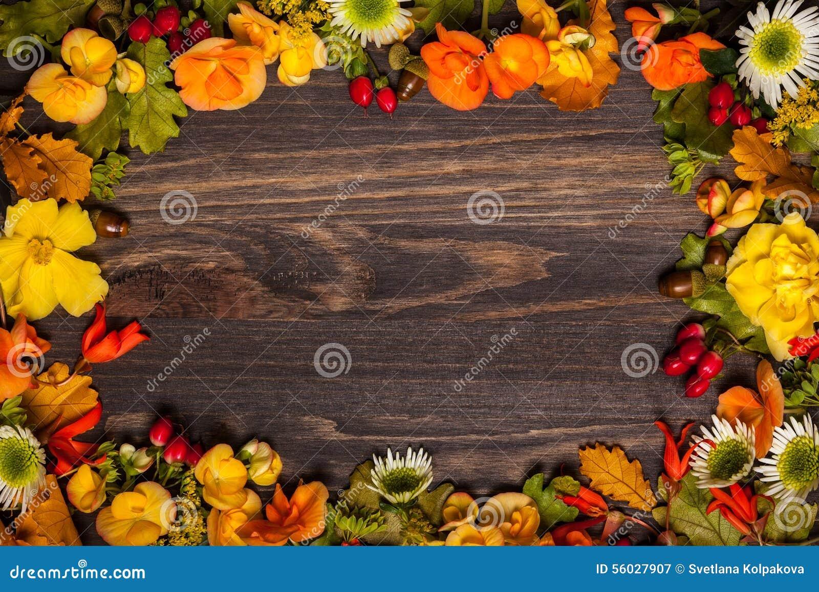 Fiori e bacche autunnali immagine stock immagine di mazzo for Immagini fiori autunnali
