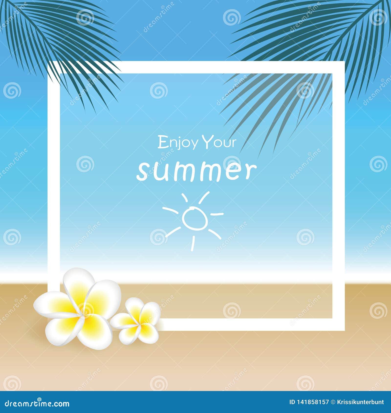 Fiori e foglia di palma esotici del frangipane sul bello fondo di estate della spiaggia