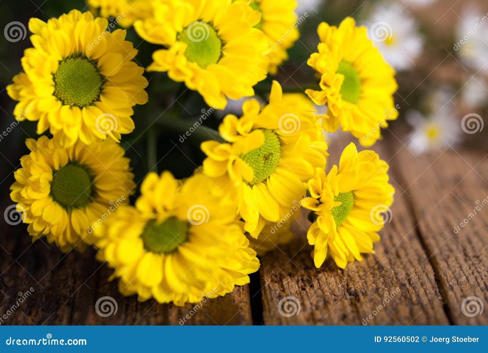 Fiori gialli su legno