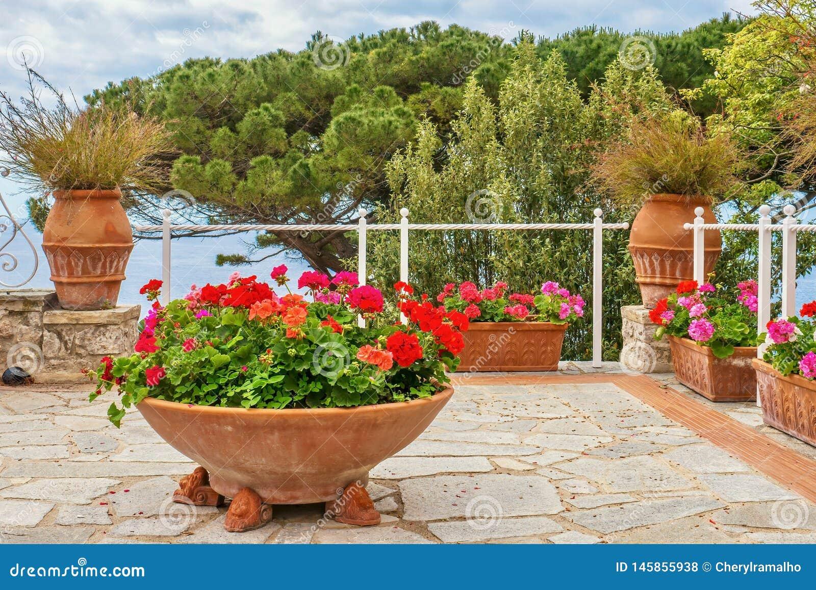 Vasi In Terracotta Per Giardino fiori graziosi di estate in vasi di terracotta fotografia