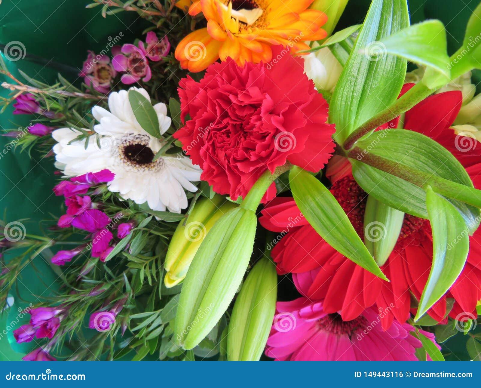 Fiori meravigliosi con un colore e un odore cos? buoni