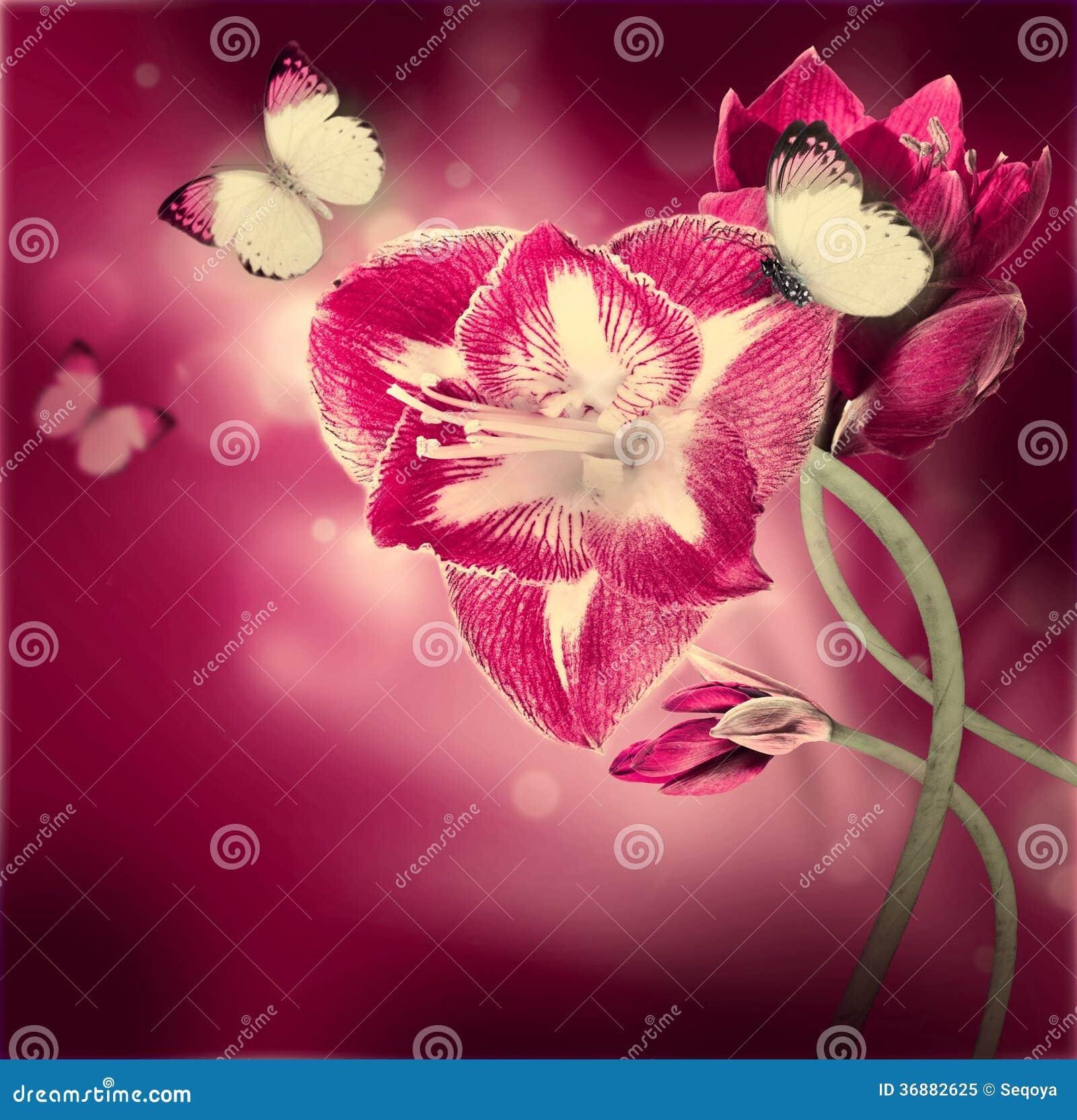 Download Fiori rossi immagine stock. Immagine di telaio, colore - 36882625