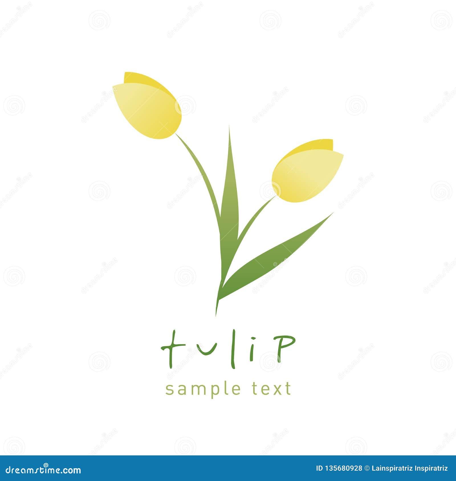 Fiori Semplici E Stilizzati Del Tulipano Isolati Su Fondo