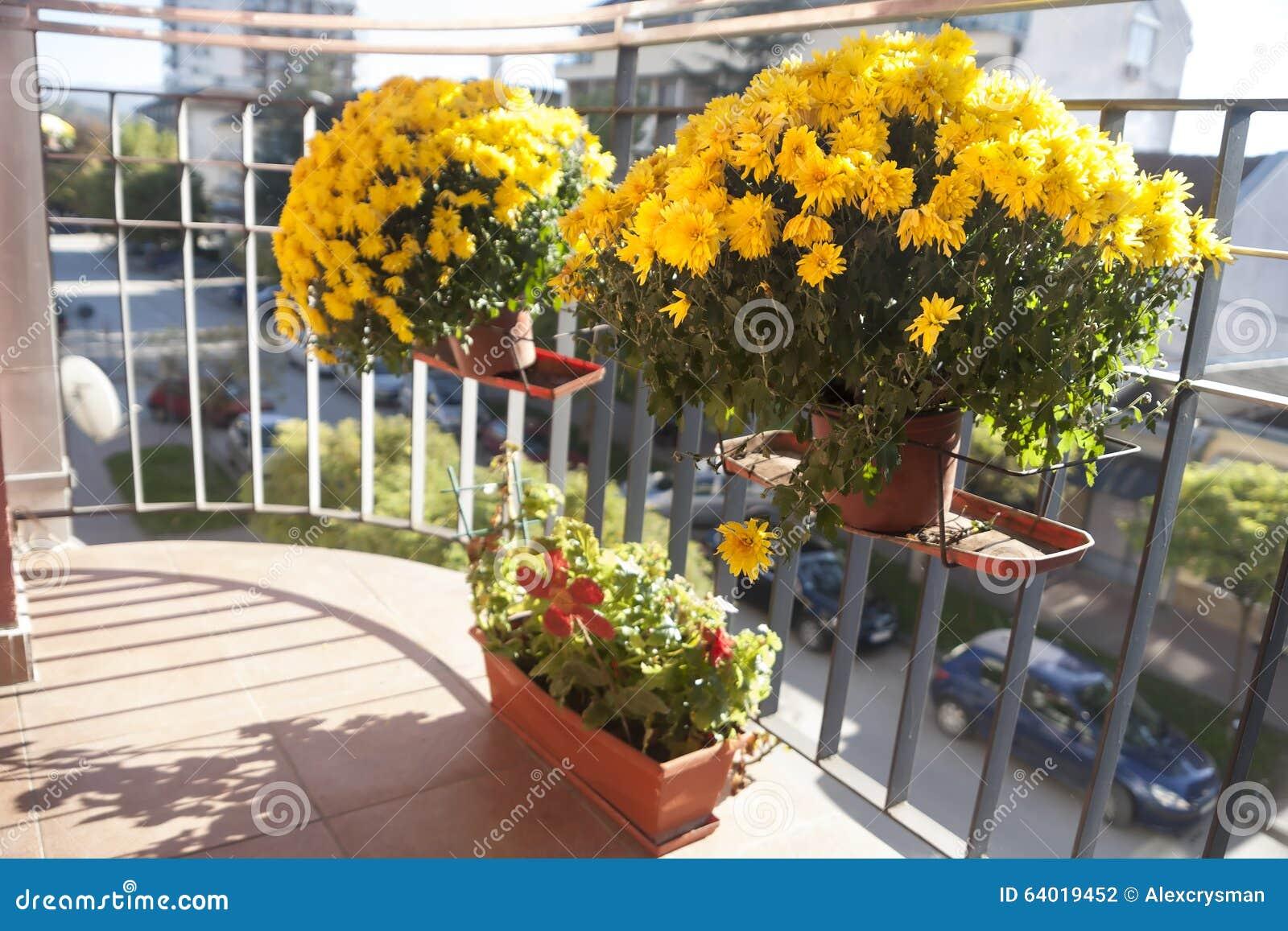 Fiori Sul Terrazzo Ideas - Idee Arredamento Casa - hirepro.us