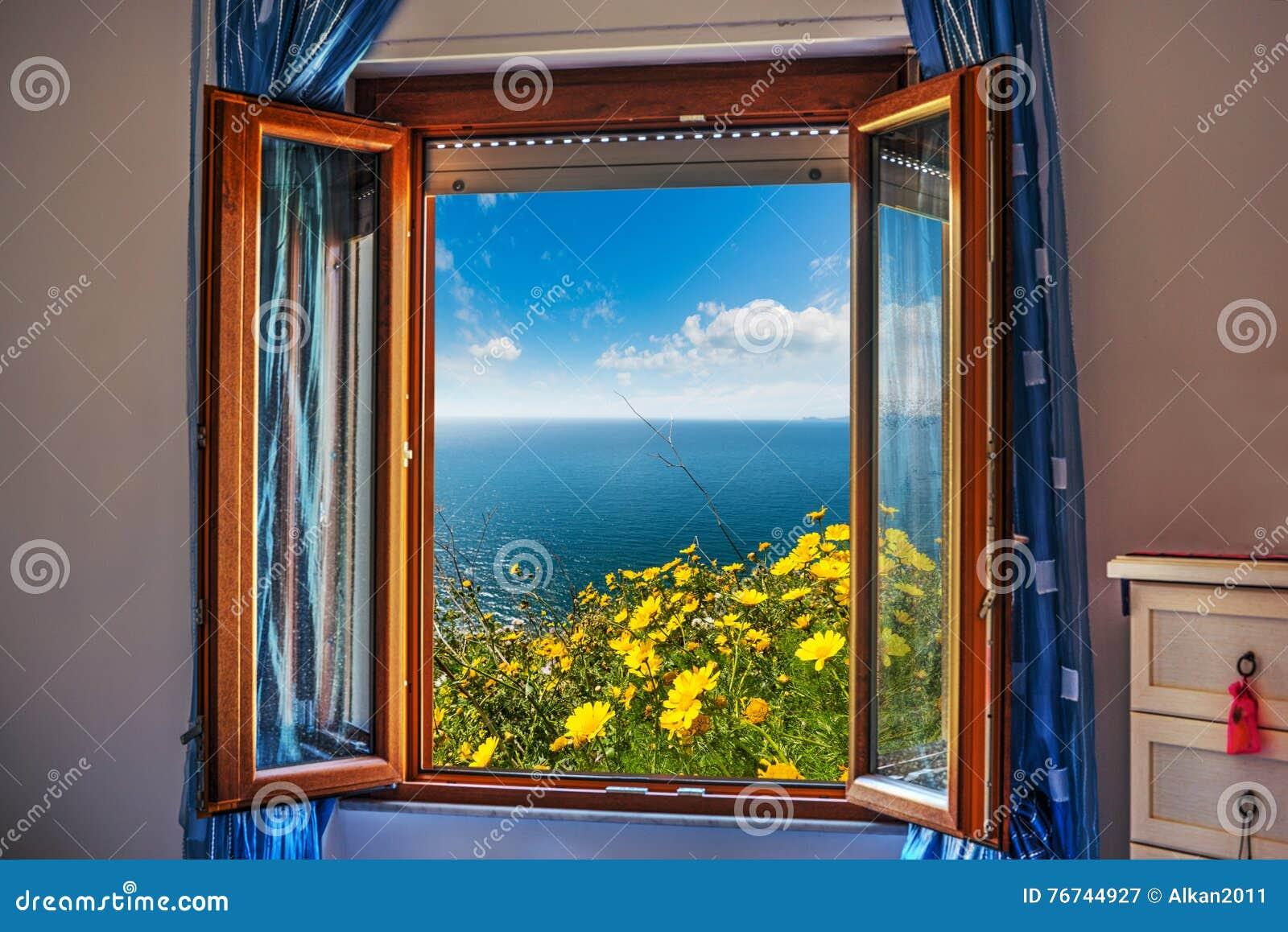 Fiori visti attraverso una finestra aperta immagine stock for Finestra antica aperta