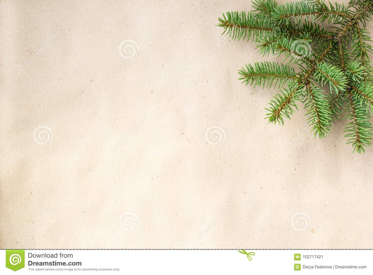 Fir branches border on light rustic background, good for christmas backdrop