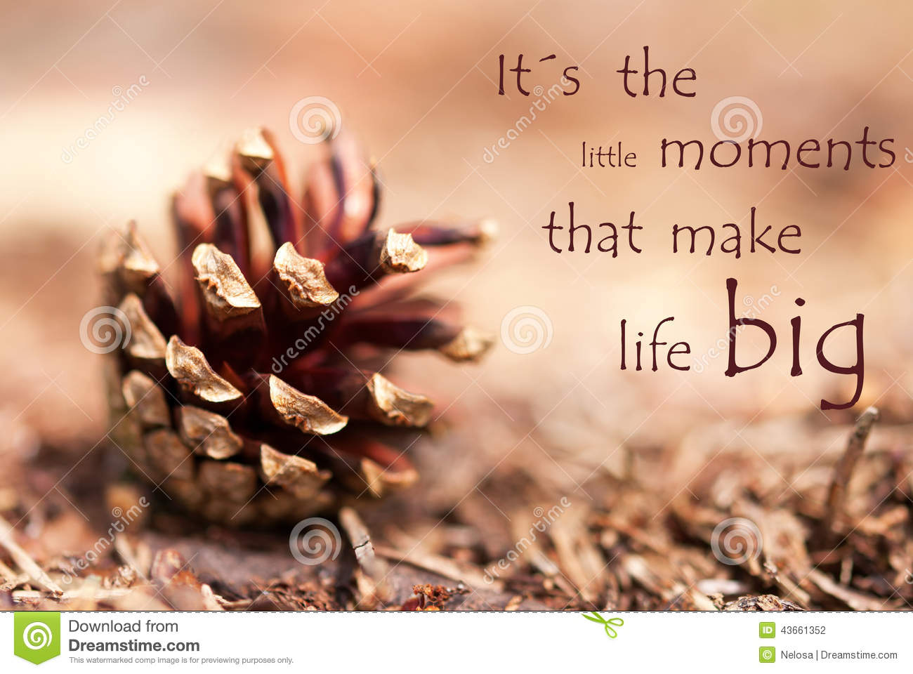 Fir cone with saying its the little moments that make life for When was it s a wonderful life made