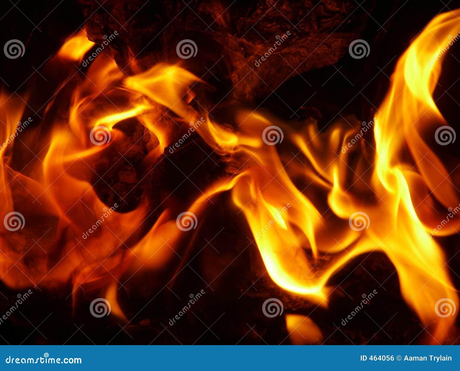Download Fire stock photo. Image of bonfire, campfire, orange, heat - 464056