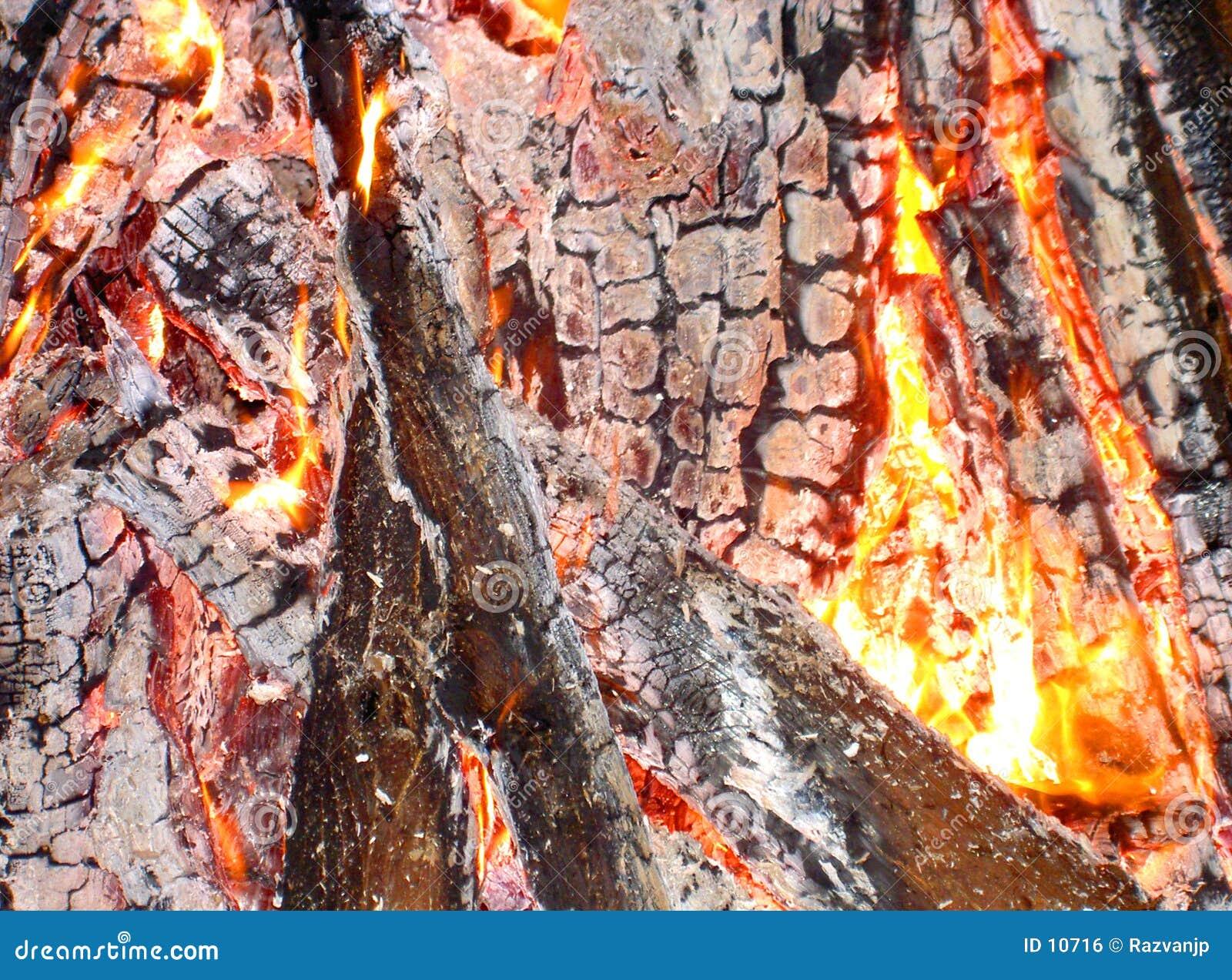 Fire anatomy
