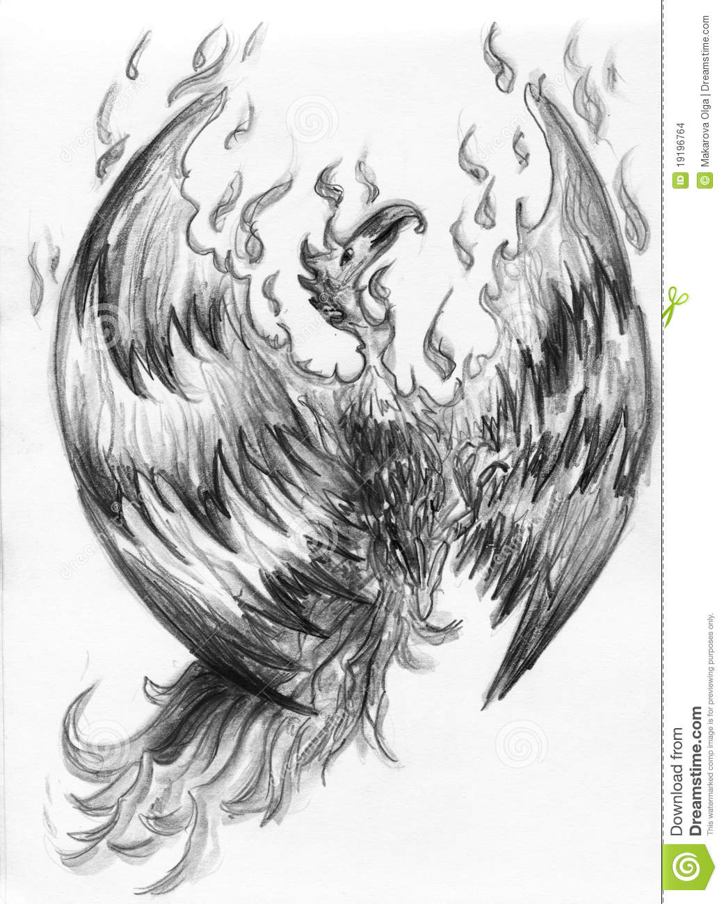 Fire Bird - Phoenix Stock Illustration. Illustration Of Renewal - 19196764