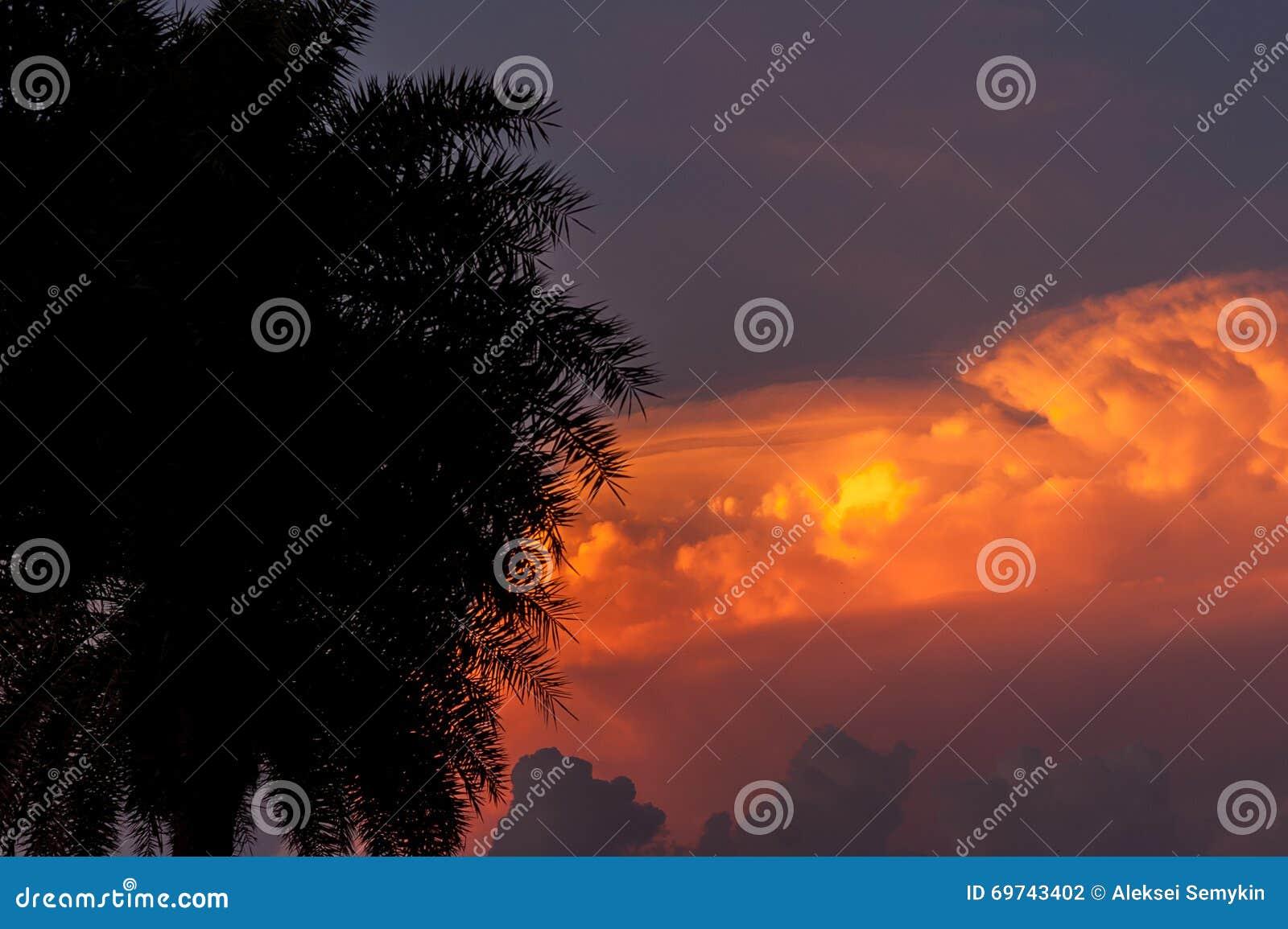 fiery glow burning sunset - photo #34