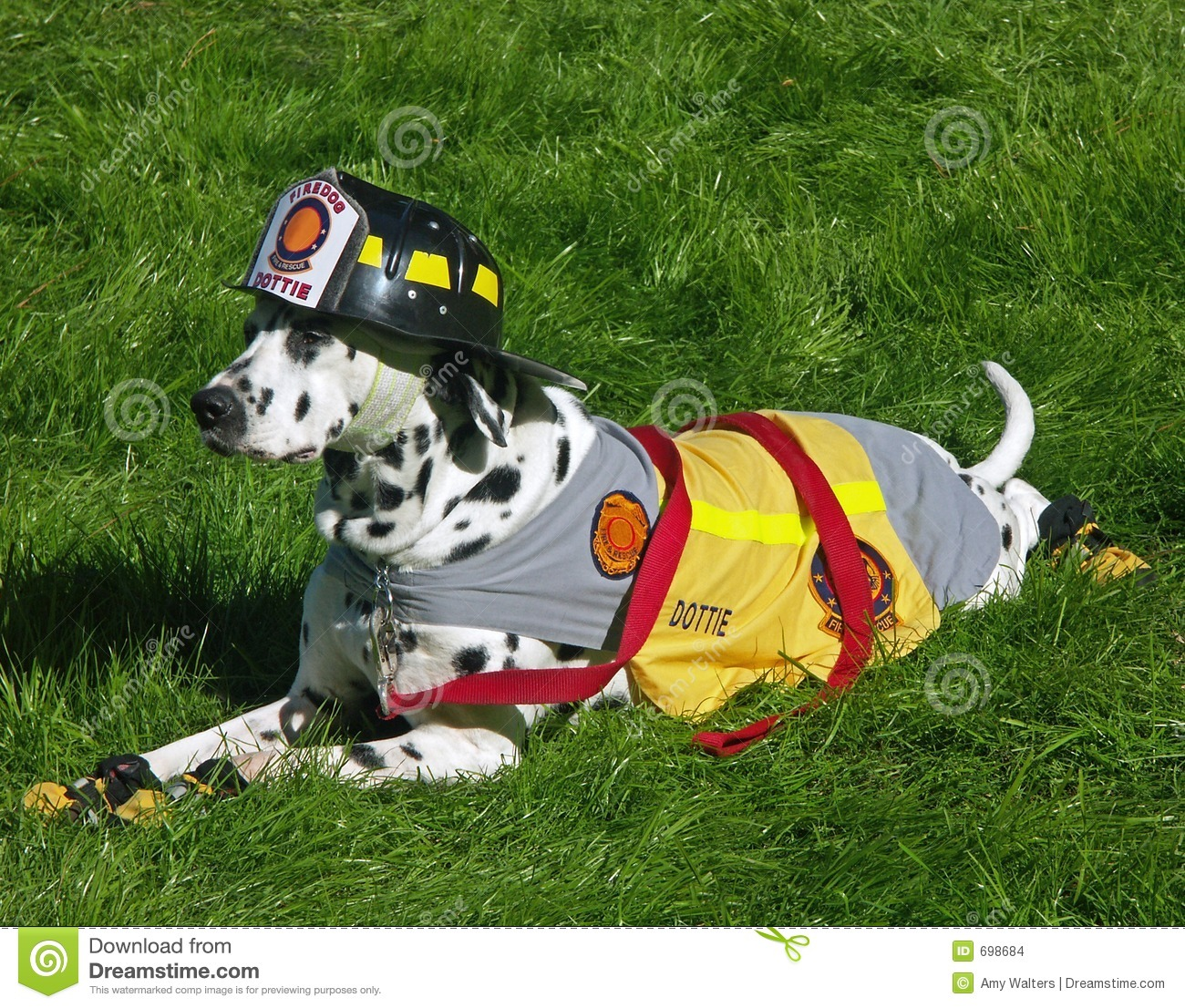 Fire Department Dalmation Mascot