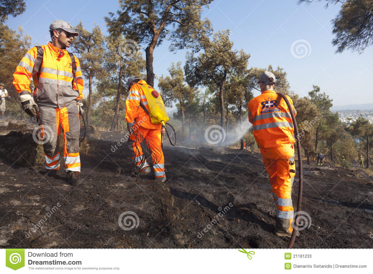 Fire Department Extinguishes a forest fire