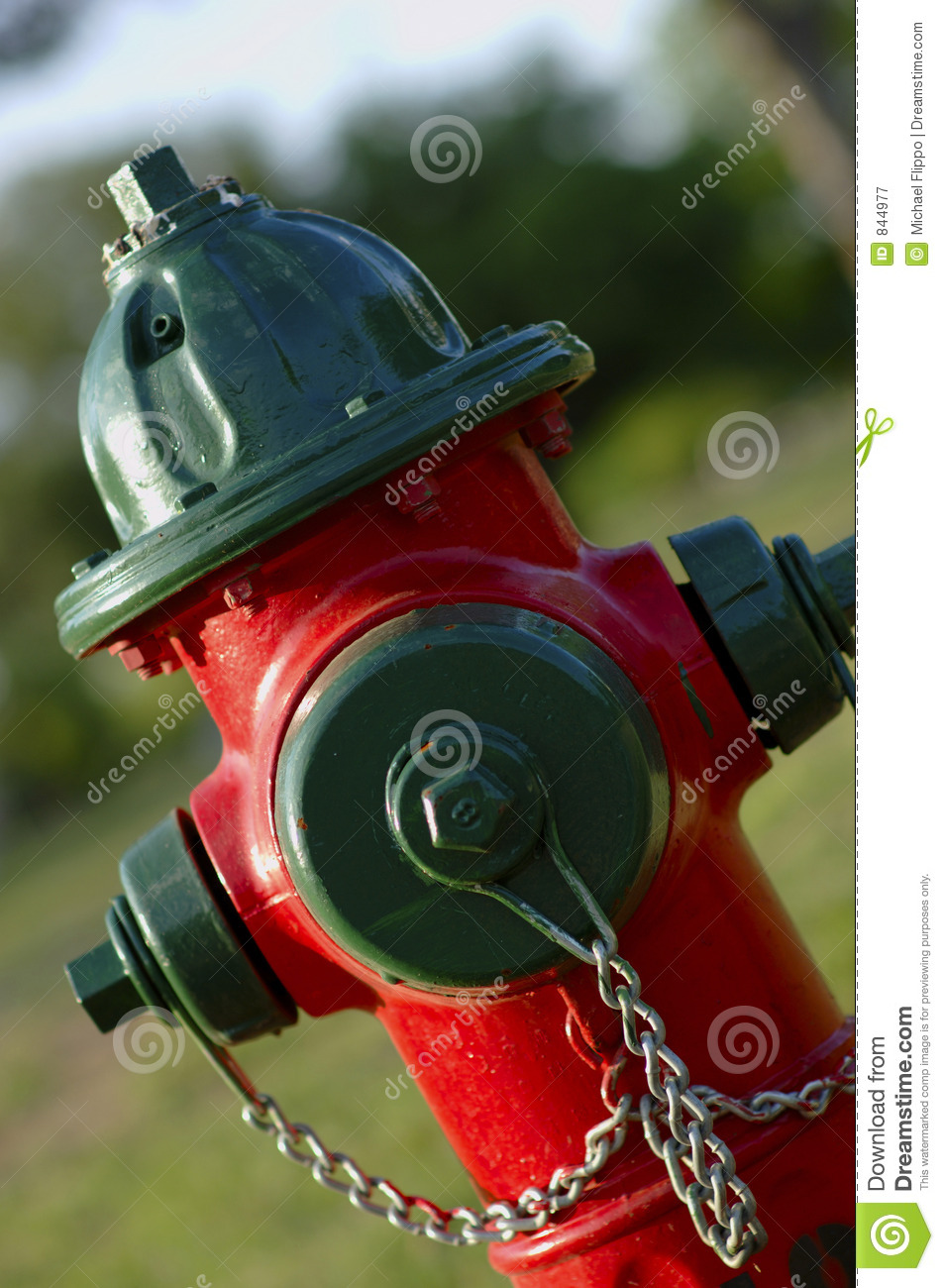 Fire Hydrant - Red and Green