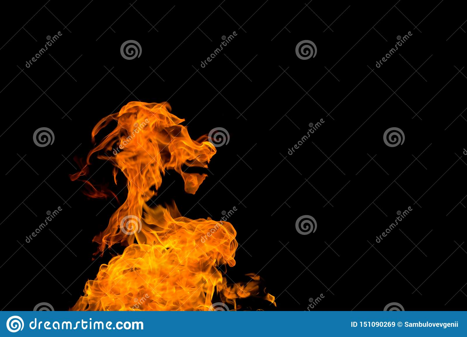 Fire In The Shape Of A Goat`s Muzzle  Fire Flames On Black