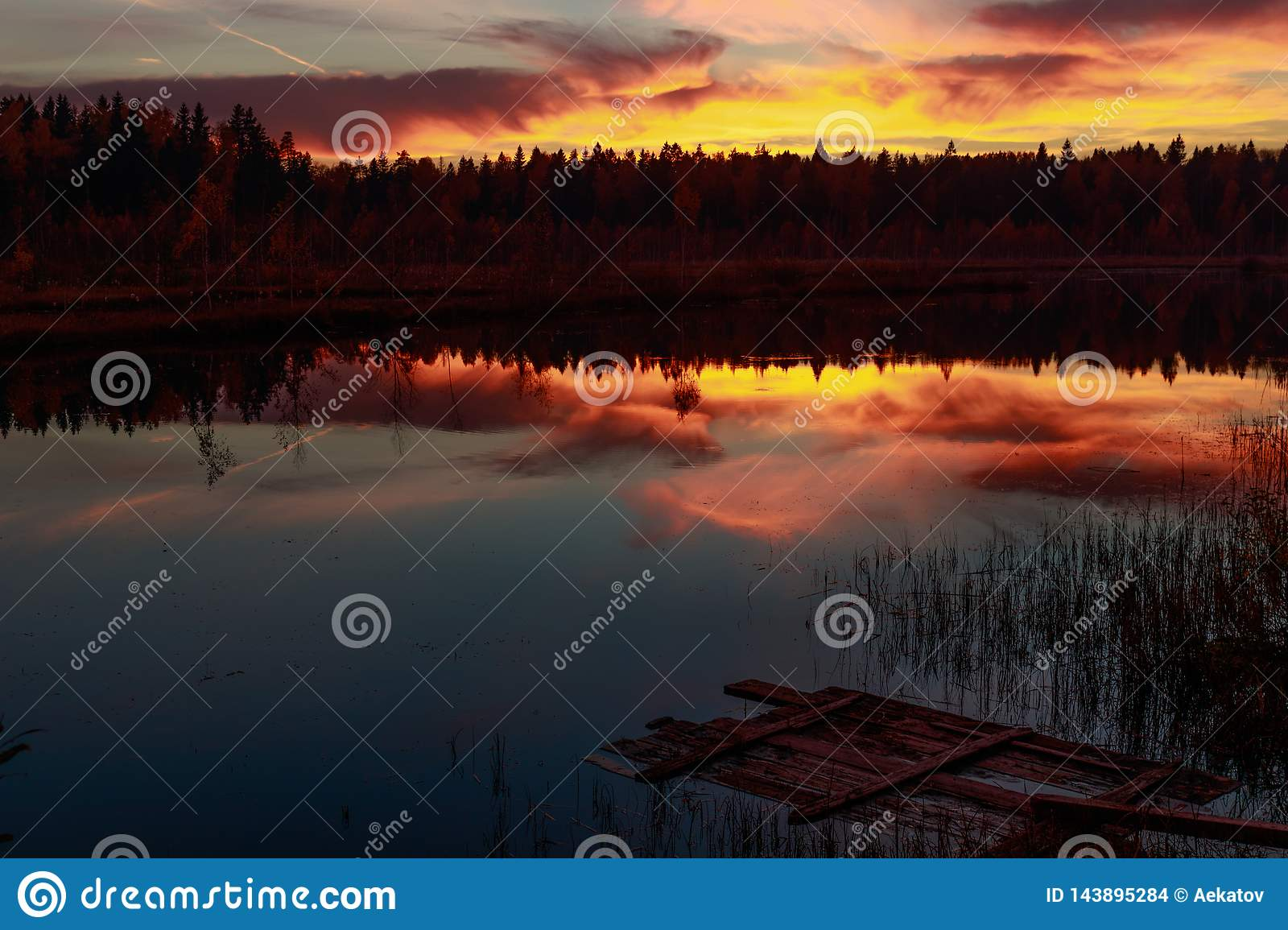 Fire Sunset on the forest lake