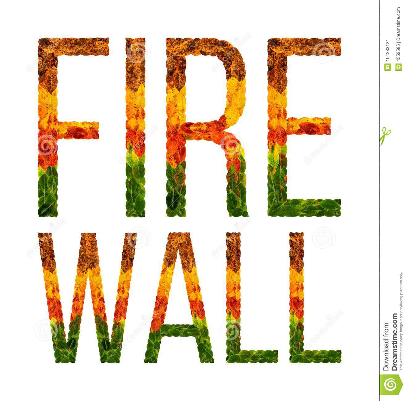 Word Fire Wall Written With Leaves White Isolated
