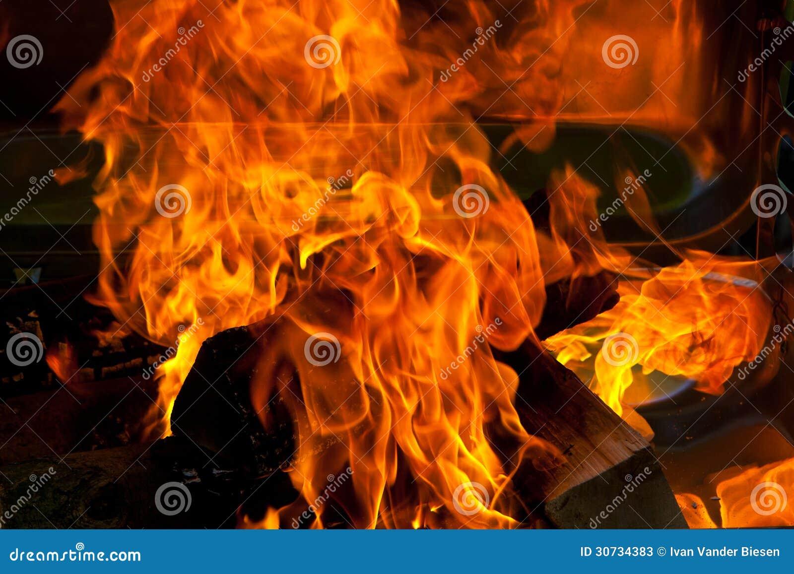 Fire wood BBQ