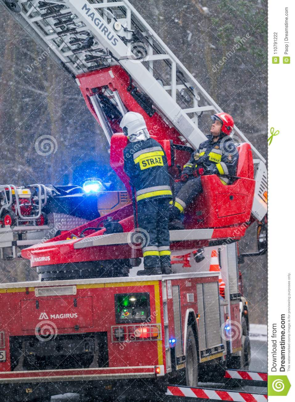 Firefighters cutting branches of a tree