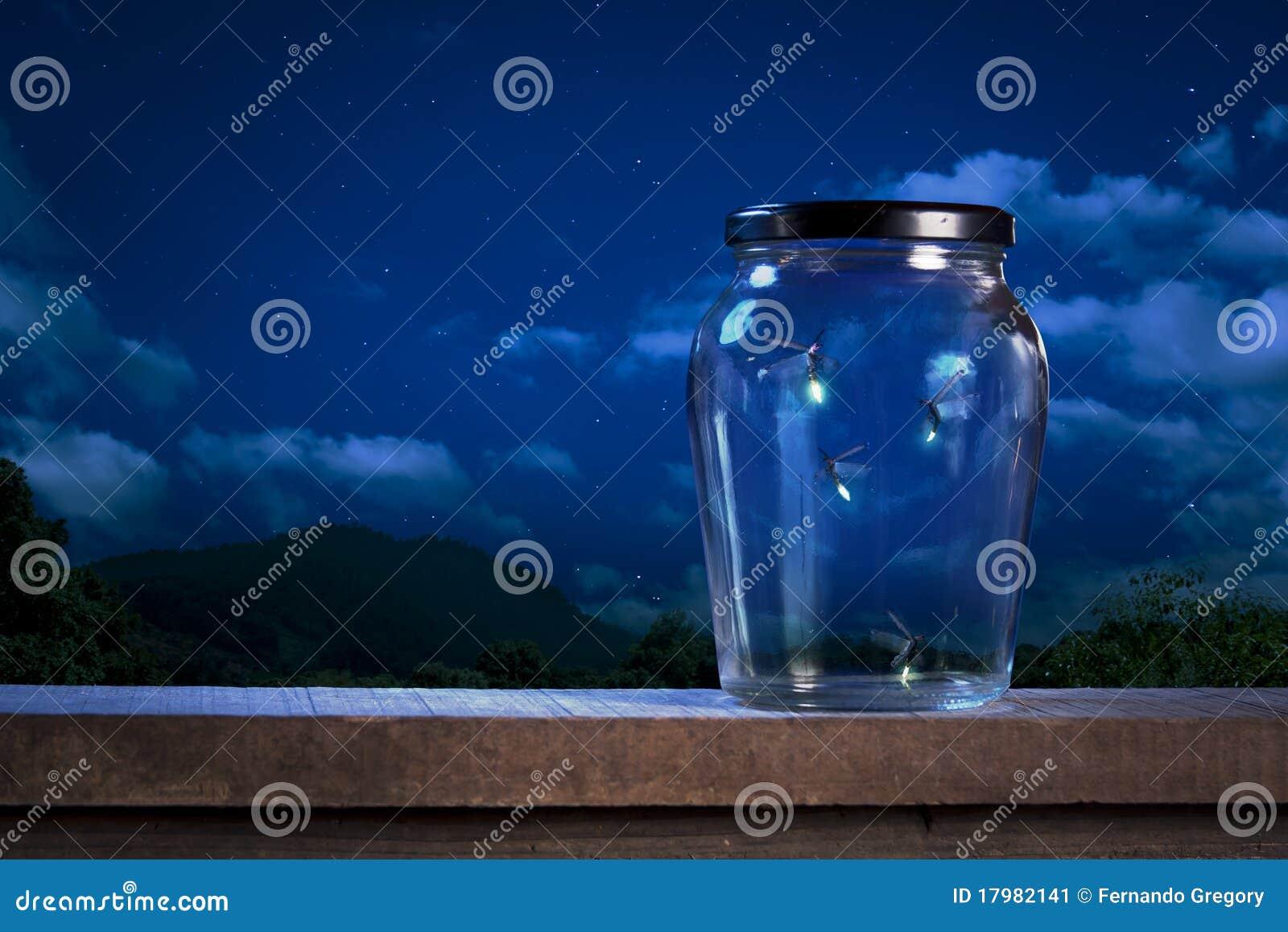 Fireflies em um frasco na noite